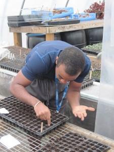 Joe planting