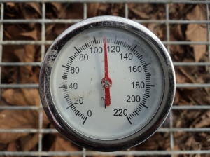 This is the temperature of our compost hot beds on March 5