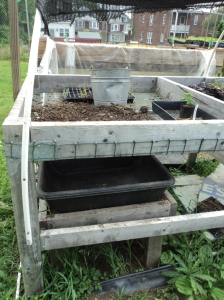 Tray being used to collect sifted compost